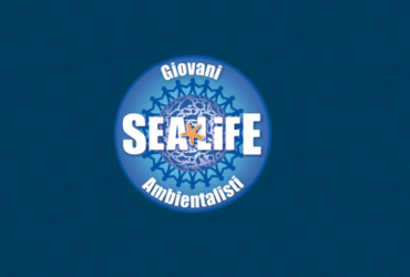 SEA LIFE Roma Aquarium Ricerca 12 Giovani Ambientalisti per la salvaguardia delle creature marine