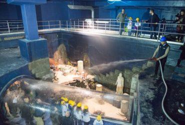 SEA LIFE Roma Aquarium, al via il riempimento delle vasche