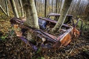 L'albero motore - Francesco Castelli