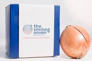 #SMILINGONION: KLEIN RUSSO, SPENCER & LEWIS E ISAYWEB PER LA CAMPAGNA DI SENSIBILIZZAZIONE DI OPERATION SMILE ITALIA ONLUS