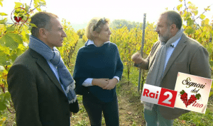 TV OPPORTUNITIES – I SIGNORI DEL VINO 4
