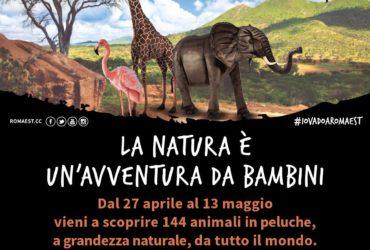ANIMALS: A ROMAEST IL PROGETTO EDUCATIVO  IN COLLABORAZIONE CON IL WWF