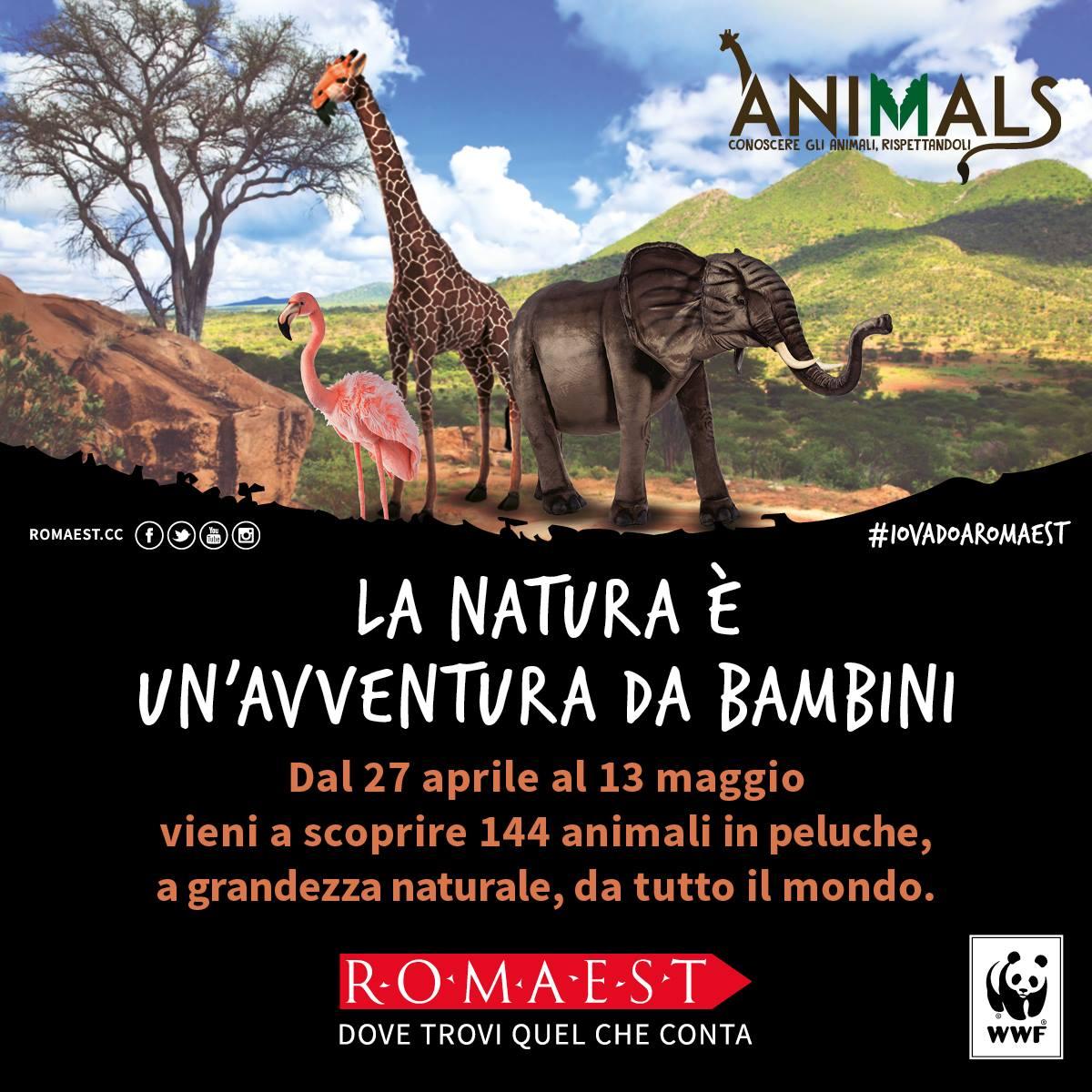 ANIMALS: A ROMAEST IL PROGETTO EDUCATIVO