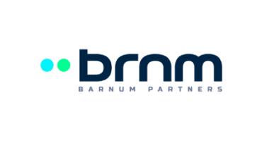 brn logo blu